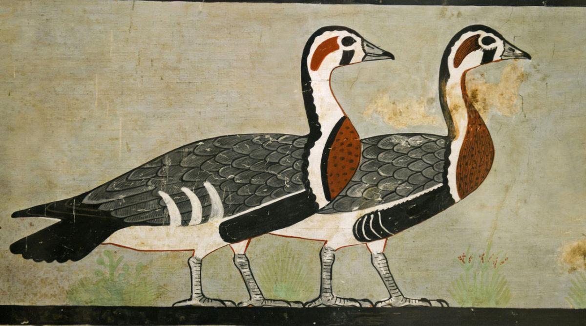 The Meidum Geese